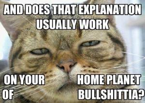 Cat says