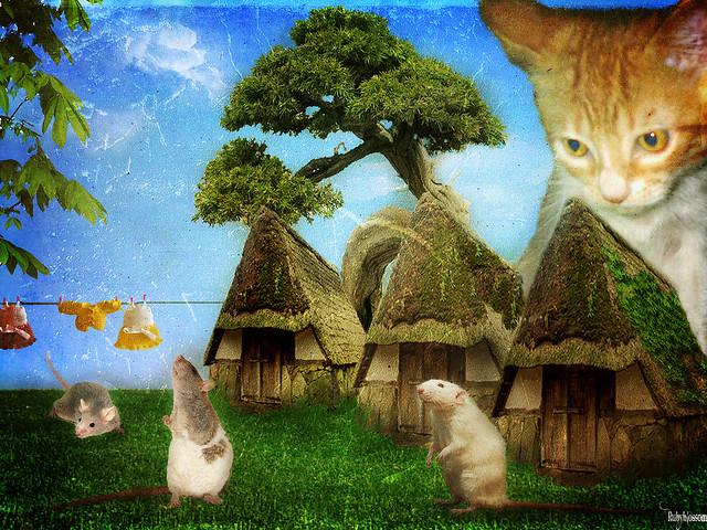 fantasy-cat-1