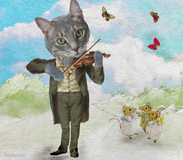 fantasy-cat-violin