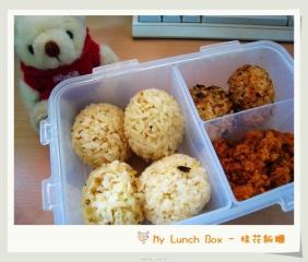 lunchbox-go-green-for-school