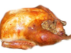 GMO turkey