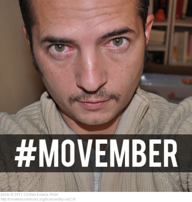 movember-2013